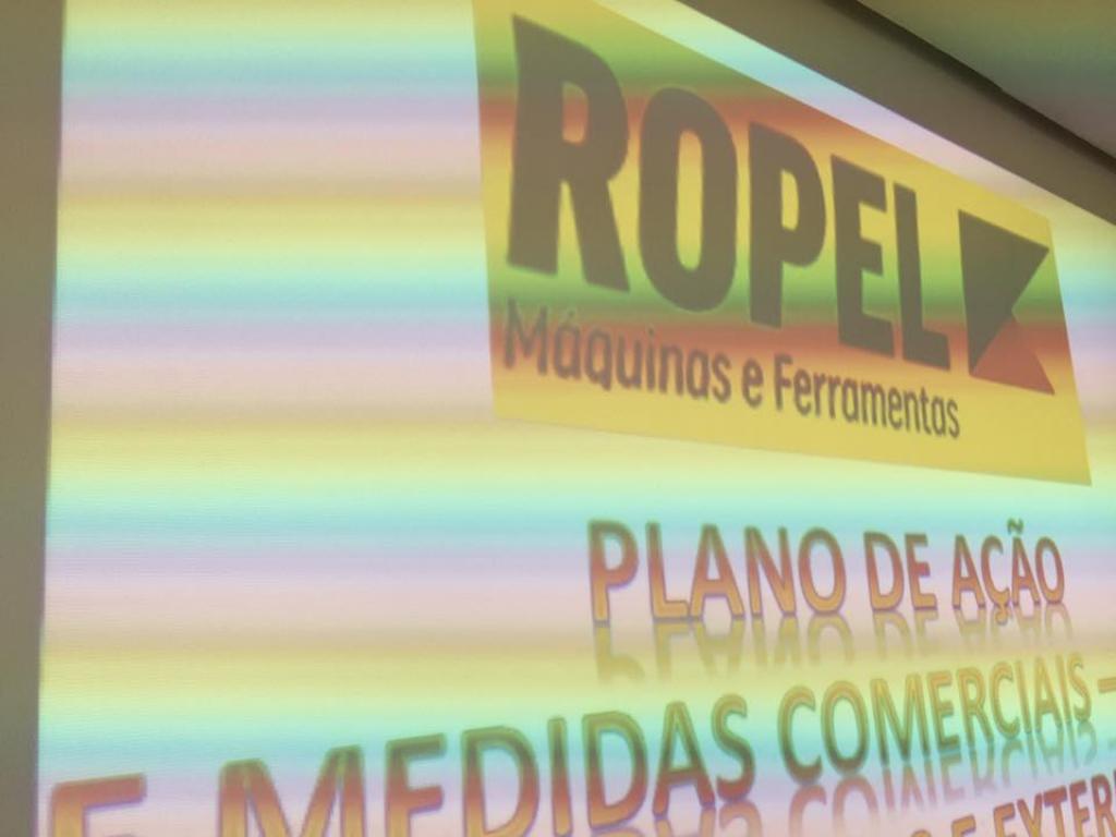 Treinamento de vendas, planejamento e estratégia para novos departamentos da ROPEL