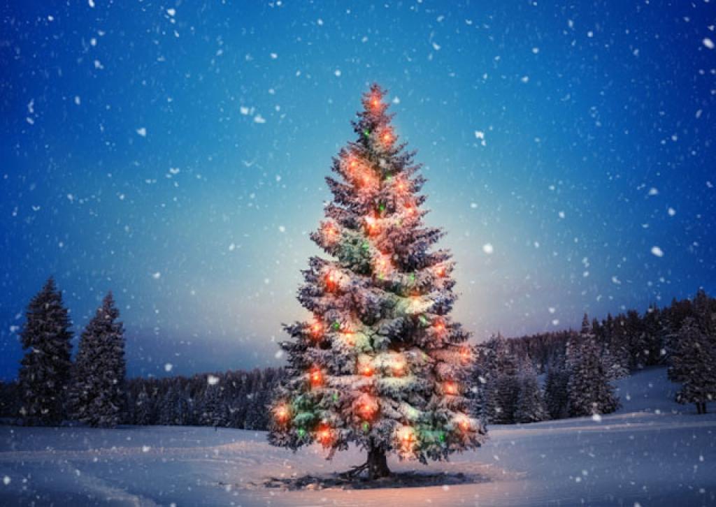 7 técnicas para incendiar as vendas de Natal Indo além do olho no olho: confira estratégias para vender bem.
